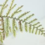 造花 FIAN アスパラガスリーフ GR LS0031GR 造花葉物、フェイクグリーン アスパラガス