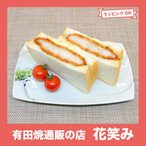 有田焼 渕取角皿 オリジナル商品 陶器 和食器 焼き皿 おしゃれ ラズベリー