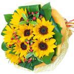 6月のおすすめ - 511134(ひまわりブーケ)花キューピット商品