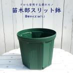 花ひろばスリット鉢(8号)