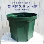花ひろばスリット鉢(12号)