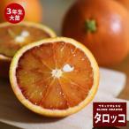 ブラッドオレンジ タロッコ 3年生 接ぎ木 大苗 産地で剪定済 1.0m苗 果樹苗 果樹 柑橘 予約販売2017年9月中旬頃お届け予定