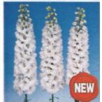 デルフィニウム キャンドルホワイト (オオヒエンソウ) ポット苗 宿根草 苗 多年草 耐寒性