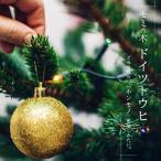 本物のクリスマスツリー ドイツトウヒ (オウシュウトウヒ) 根巻き苗 庭木 モミノキ 西濃運輸お届け(北海道、沖縄、離島不可)