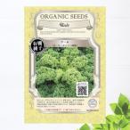 有機種子 ケール/カーリータイプ/緑葉 Lサイズ 20ml 種蒔時期 3〜7月