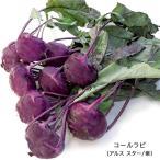 有機種子 コールラビ(アスルスター/紫) Lサイズ 10ml 種蒔時期 3〜5月、9〜10月