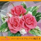 ショッピングバラ プリザーブドフラワー バラ ギフト 花束 誕生日 送別卒業 大きなバラの花束 送料無料 ミニブーケ 結婚祝い
