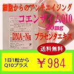 1日1粒からのサプリメント Q10プラス ミトコンドリアを元気にするQ10とDNA!アンチエイジングに