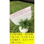 緊急入荷在庫あり、日本制、翌日到着、1枚入パッケージ マスク 小さいめ やわらか不織布 99%カット高性能フィルター  三層構造 ウィルス  細菌 花粉 予防