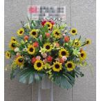 スタンド花1段 御祝・開店・周年お誕生日・劇場・発表会など、高品質ひまわりのスタンド花