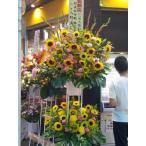 スタンド花2段 御祝・開店・周年お誕生日・劇場・発表会など、高品質ひまわりのスタンド花