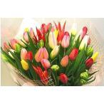送料無料!お好きな色が選べる新潟産チューリップ50本の花束