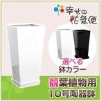 ショッピング鉢 10号角高陶器鉢(白黒) A-026 送料無料 観葉植物 植木鉢 大型 植え替え