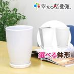 ショッピング鉢 6号陶器鉢(白) A-038 送料無料 観葉植物 植木鉢 植え替え
