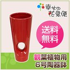 6号穴あき陶器鉢(鉢カバー/底穴なし)赤(受皿なし) SH-257LR 送料無料 観葉植物 植木鉢 植え替え