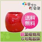 6号 陶器ボール鉢(鉢カバー/底穴なし)赤 YB-0960LR 送料無料 観葉植物 植木鉢 植え替え