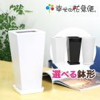ショッピング鉢 6号角陶器鉢(白) A-033 送料無料 観葉植物 植木鉢 植え替え
