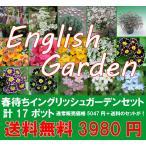 春待ちイングリュシュガーデニングセット 豪華バージョンPart1  宿根草を中心に今から植えて春からの開花を楽しむセットです 送料無料・他品同梱不可