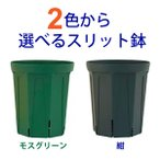 2色から選べる 5号スリット鉢(ロングタイプ)直径15cm