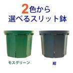2色から選べる 8号スリット鉢  直径24cm