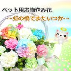 ペット用 お悔やみ花 レインボーカーネーション入り Lサイズ お供えアレンジメント  生花アレンジメント