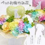 ペット用 お悔やみ花 レインボーカーネーション入り お供えアレンジメント  生花アレンジメント