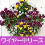 ワイヤー中セット 花苗で作る ハンギングリース 壁掛け鉢 メッシュタイプ FMP01-35Gセット クリスマスリース ビオラリース