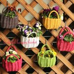 Yahoo!花苗園芸店なごみコロンと かわいい カラフル プチ ハンギングバスケット(SSサイズ)