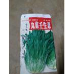 野菜苗 丸葉任生菜 二ブナ 2.5号鉢