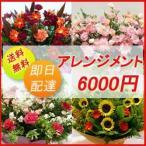 フラワーコンシェルジュが厳選した花屋のお祝いアレンジメント花 6000円