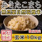 令和2年産米 秋田県産 あきたこまち 無農薬自然乾燥 玄米 10kg 農家直送