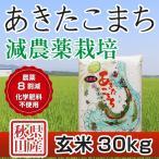 令和元年産米 秋田県産 あきたこまち 減農薬栽培 玄米 30kg 農家直送
