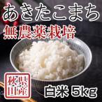 令和2年産米 秋田県産 あきたこまち 無農薬栽培 白米 5kg 農家直送