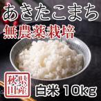 令和2年産米 秋田県産 あきたこまち 無農薬栽培 白米 10kg 農家直送