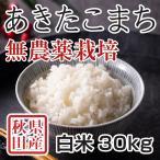 令和2年産米 秋田県産あきたこまち 無農薬栽培 白米 30kg 農家直送