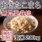 令和2年産米 秋田県産あきたこまち 無農薬栽培 玄米 20kg 農家直送
