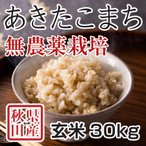 新米 令和2年産 秋田県産あきたこまち 無農薬栽培 玄米 30kg 農家直送