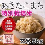 28年産米 秋田県産 あきたこまち 特別栽培米 玄米 5kg 農家直送
