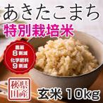 28年産米 秋田県産 あきたこまち 特別栽培米 玄米 10kg 農家直送