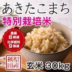 28年産米 秋田県産 あきたこまち 特別栽培米 玄米 30kg 農家直送