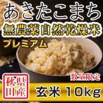 令和元年産米 秋田県産 あきたこまち 無農薬自然乾燥プレミアム 玄米 10kg 農家直送