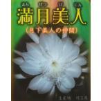 花なし・開花見込み株 月下美人の仲間 交配種 孔雀サボテン 満月美人(5号)