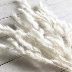 【ドライフラワー】エリアンサス 白  ハーバリウム レジン 髪飾り 花材 リース キット