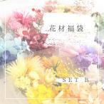 【数量限定】 花材福袋B   ドライフラワー・プリザーブドフラワー