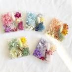 【ドライフラワー・プリザーブドフラワー】厳選花材パレット  キット ハーバリウム 材料 花材