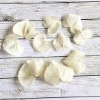 【プリザーブドフラワー】ハートリーフ 白 10枚 大地農園  ハーバリウム レジン 髪飾り 花材 アレンジ キット