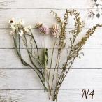 【ドライフラワー】ナチュラル花材 n-4  花材 ヘアパーツ ハーバリウム キット
