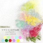 【プリザーブドフラワー】ソフトミニかすみ草 小分け2g 大地農園 ハーバリウム 髪飾り キット セット