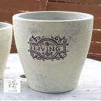 テラコッタ 鉢 11825M 丸ザラマロン 大 (鉢/陶器/植木鉢/おしゃれ/ガーデニング/大型/ポット/プランター)