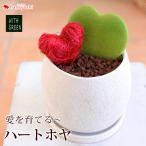 hanayoshi-y_ho1903